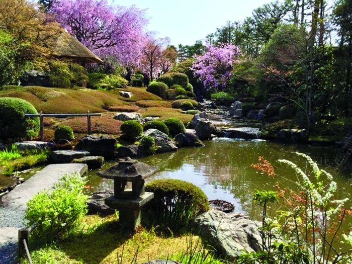 Koi pond in Kyoto