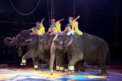 Carden circus