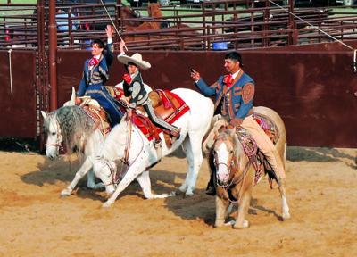 Traditional horse dances