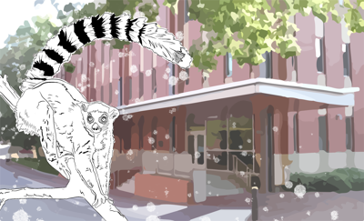 lemur graphic
