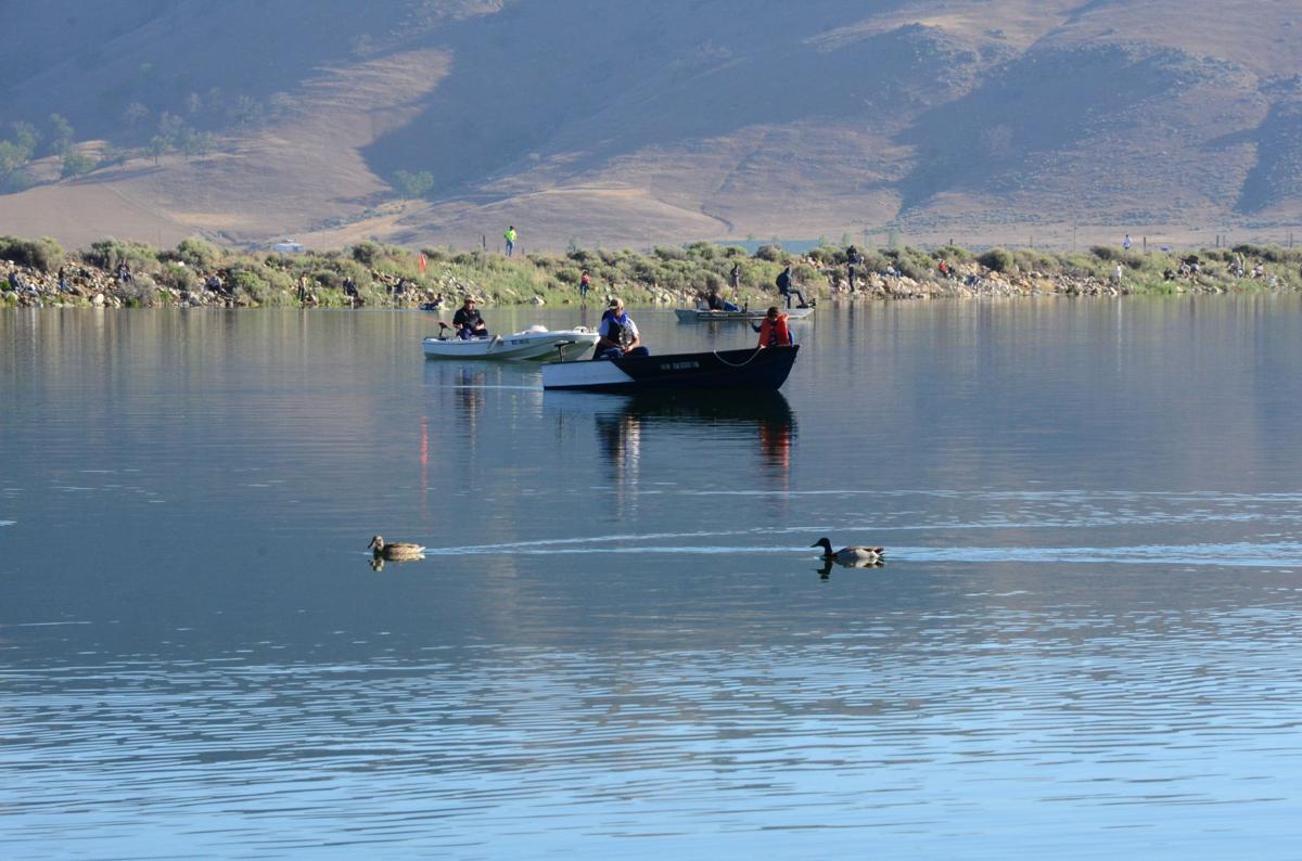 Report brite lake fish not 39 mercury impaired 39 news for Lake fishing near los angeles