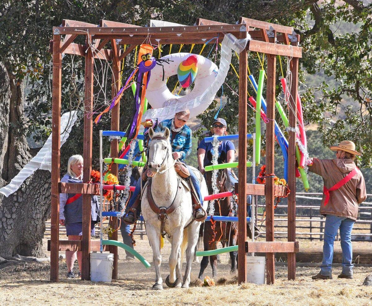 Horse SMIRNOFF (11).jpg