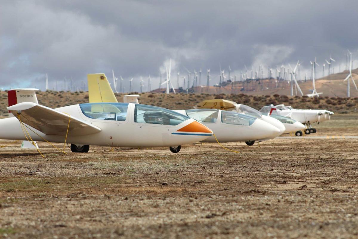 Glider-lineup.jpg