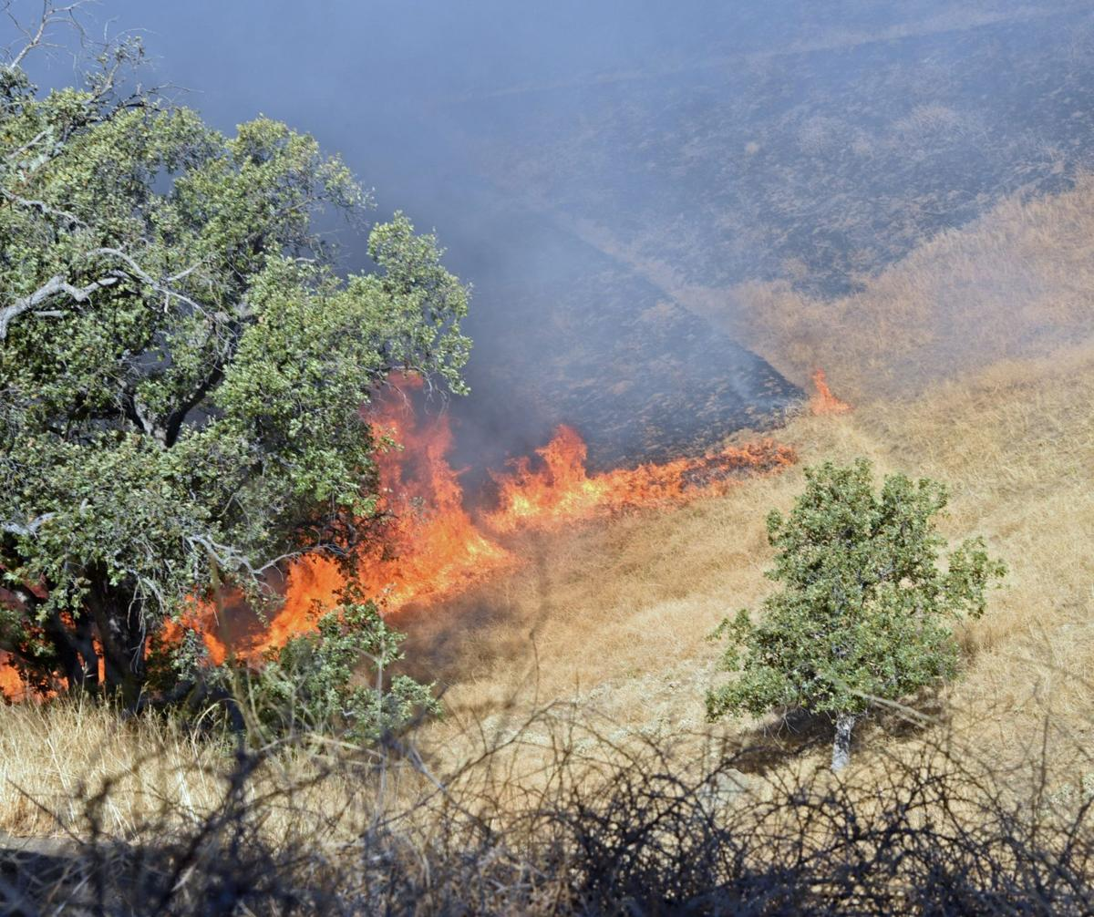 Stallion Springs Fire SMIRNOFF (3).jpg