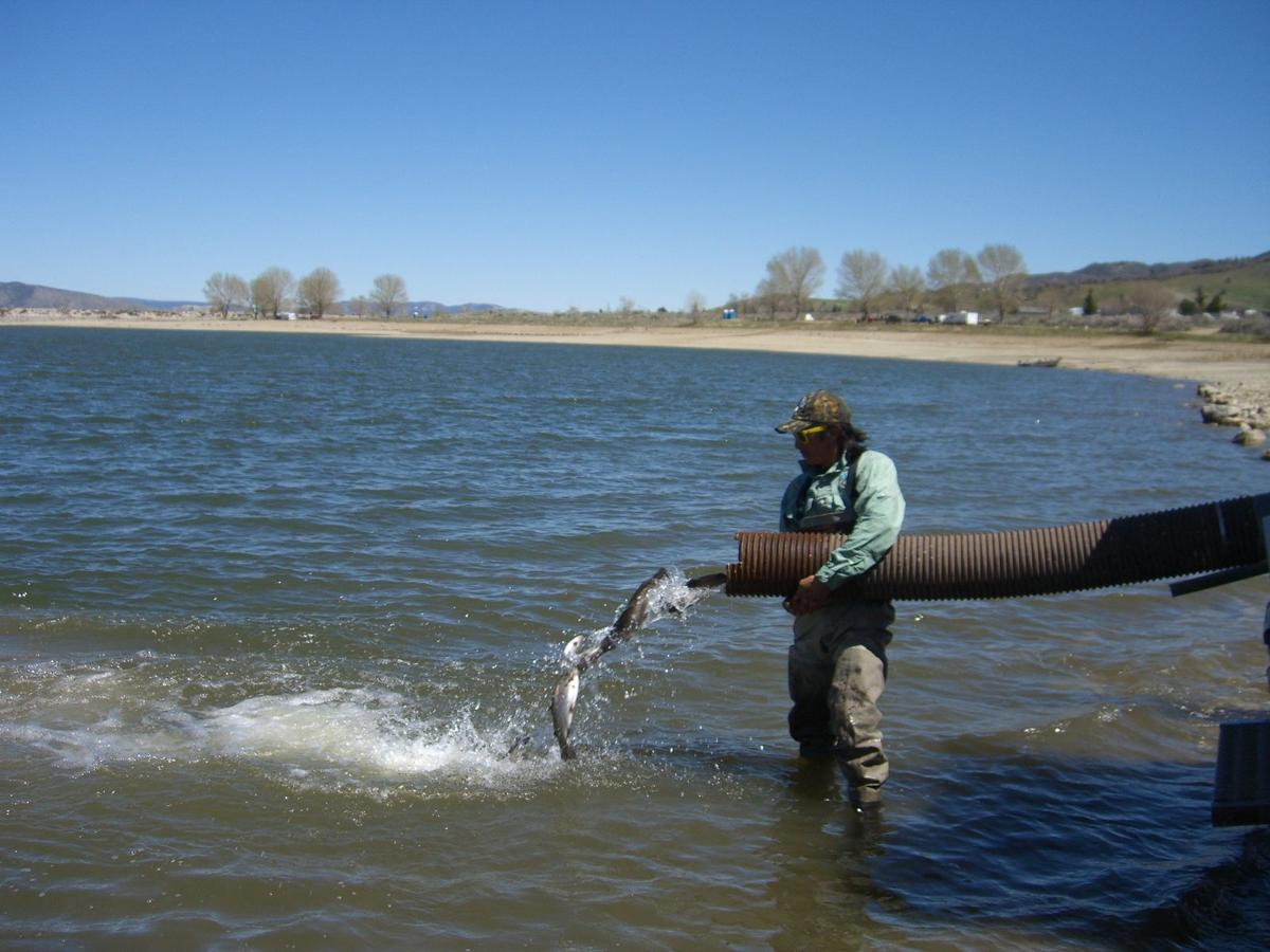 Parks and rec gears up for holiday season and brite lake for California fishing game