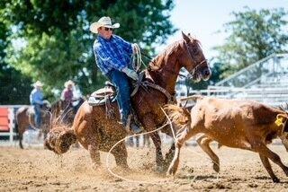 Rodeo Photo 1.jpg