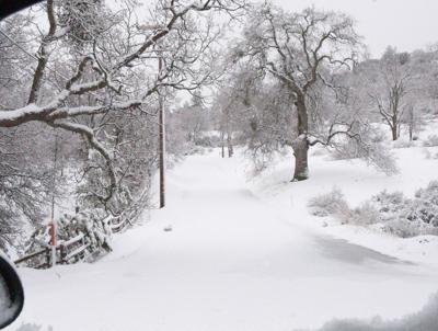 Snow tn SMIRNOFF (2).JPG