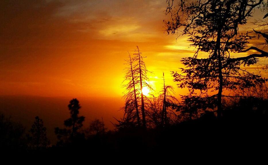 Natural Sightings sunset