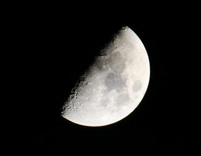 Natural Sightings #555 - First Quarter Moon.jpg