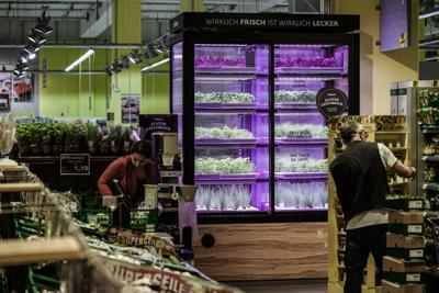 Kroger hydroponics