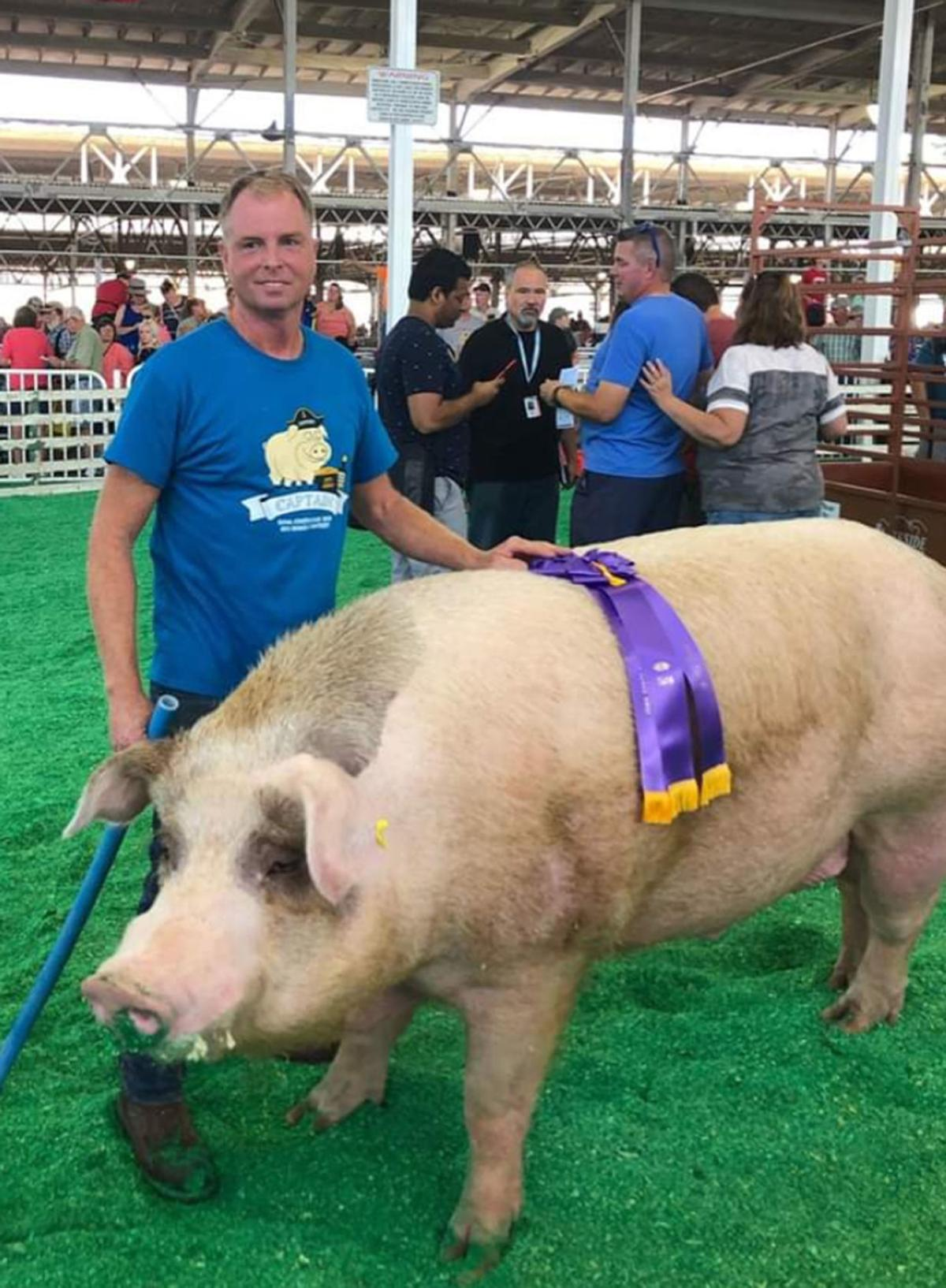 State's biggest pig again hails from Northeast Iowa | Tri-state News