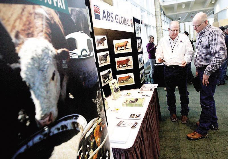 Beef forecast: Slight price jump | Tri-state News | telegraphherald com