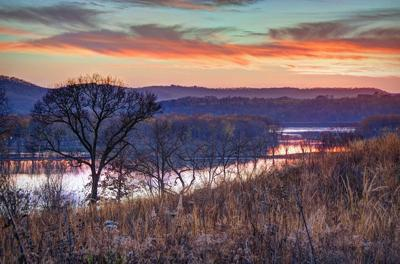 Jo Daviess conservation group to host night hike at reserve