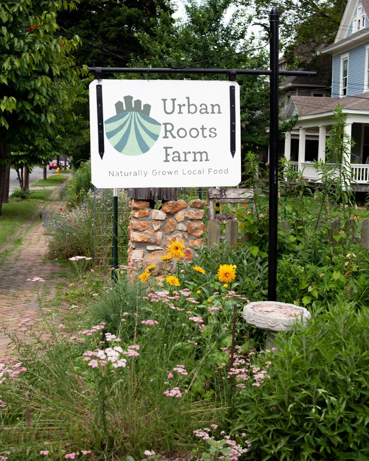 Urban Roots sign