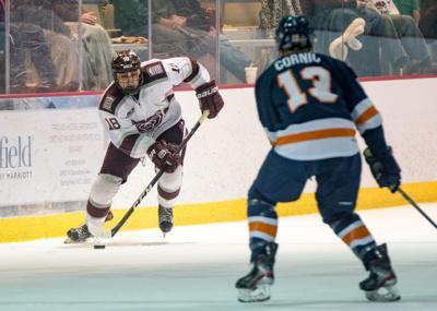 Ice Bears article photo