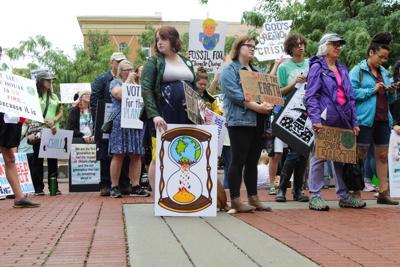 Springfield Climate Strike 2019
