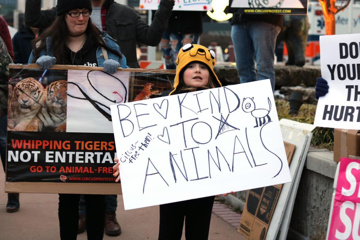 """""""Be Kind to Animals"""""""