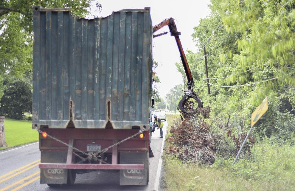Ask The Advocate: Who's supposed to haul off tree debris? Another I-10 exit? _lowres