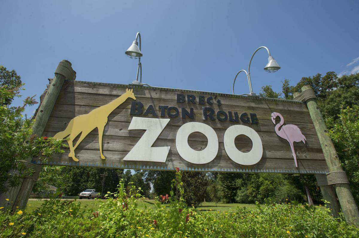 BR.zoosupport251.adv.jpg
