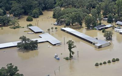 Ascension Officials 15000 Homes Busineses Flooded So Far Levee