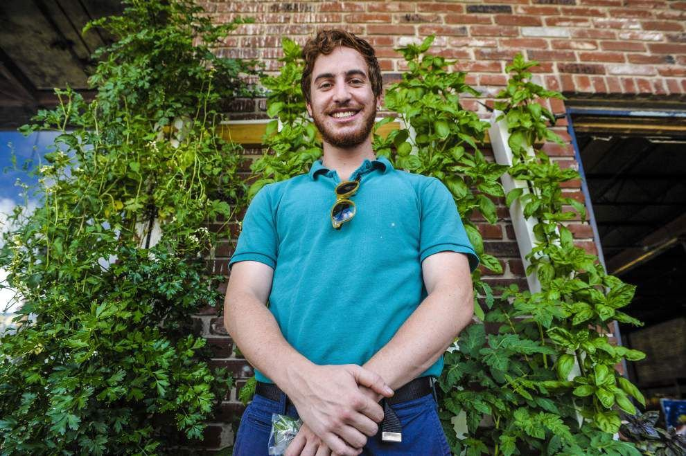 Learn about vertical gardening at free New Orleans workshop _lowres