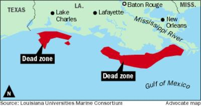 Gulf of Mexico dead zone not shrinking as hoped, researchers find _lowres