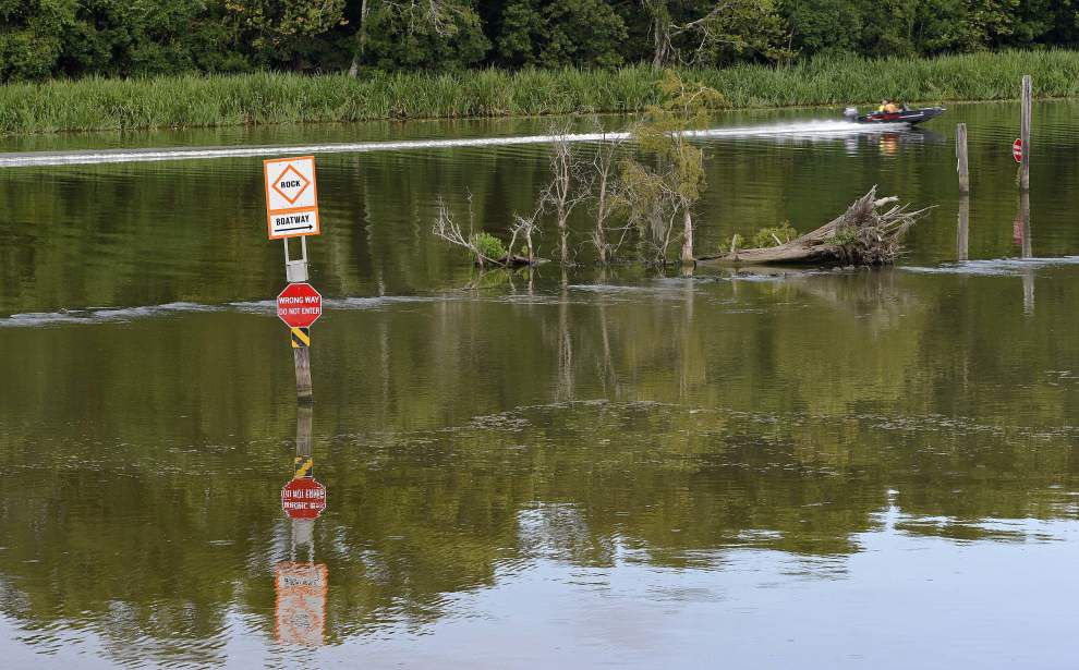 Big problem with Amite River means bad news for boaters, freshwater fish, plant life _lowres
