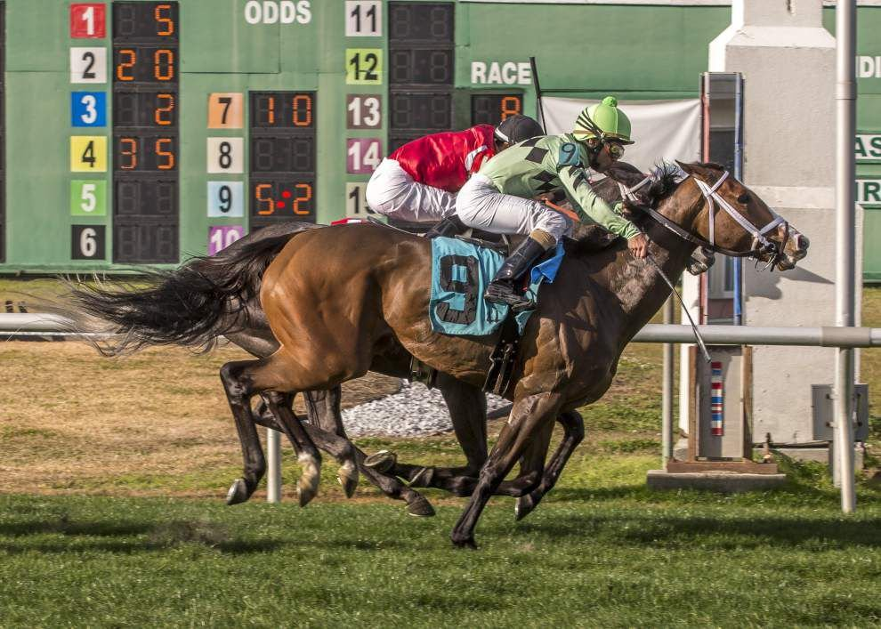 Chok's choices for Sunday at the Fair Grounds _lowres