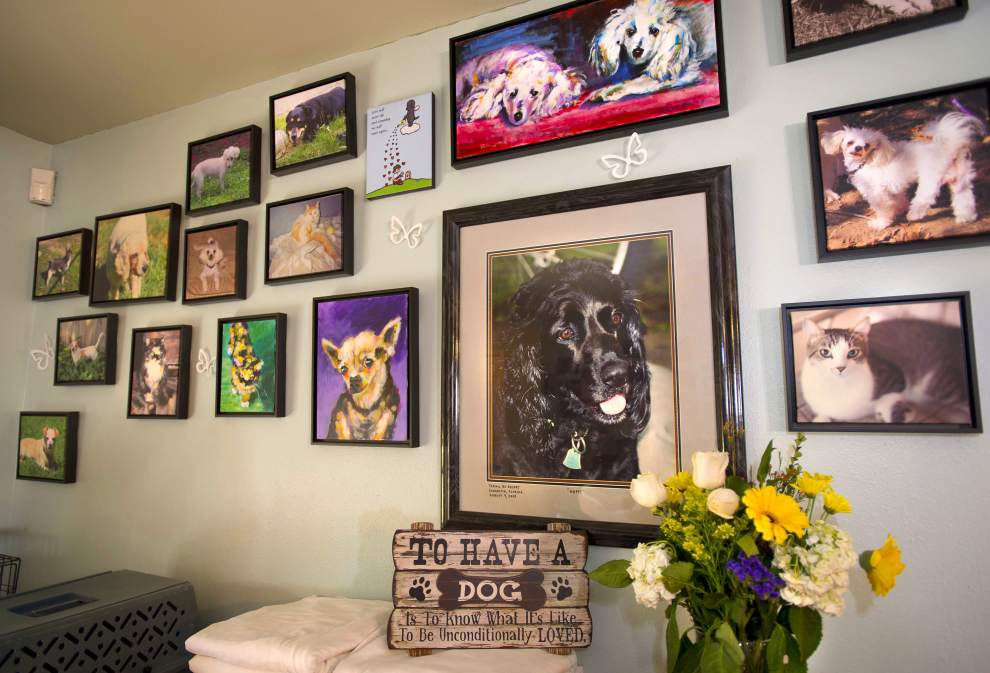 Hammond woman finds mission adopting disabled, otherwise unadoptable dogs _lowres