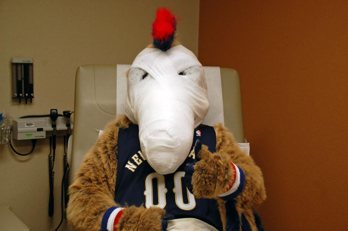Pierre the Pelican's beak-constructive surgery: First photo of the bird_lowres