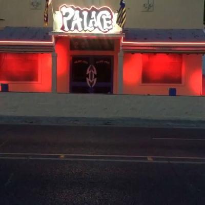 The Palace cub