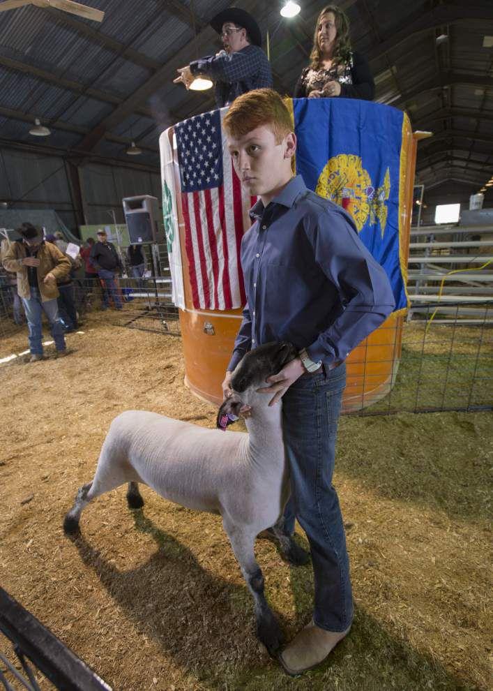 Photos: Lafayette Parish 4-H/FFA _lowres