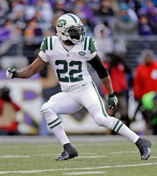 Ed Reed, James Harrison among names on NFL's unemployment line _lowres