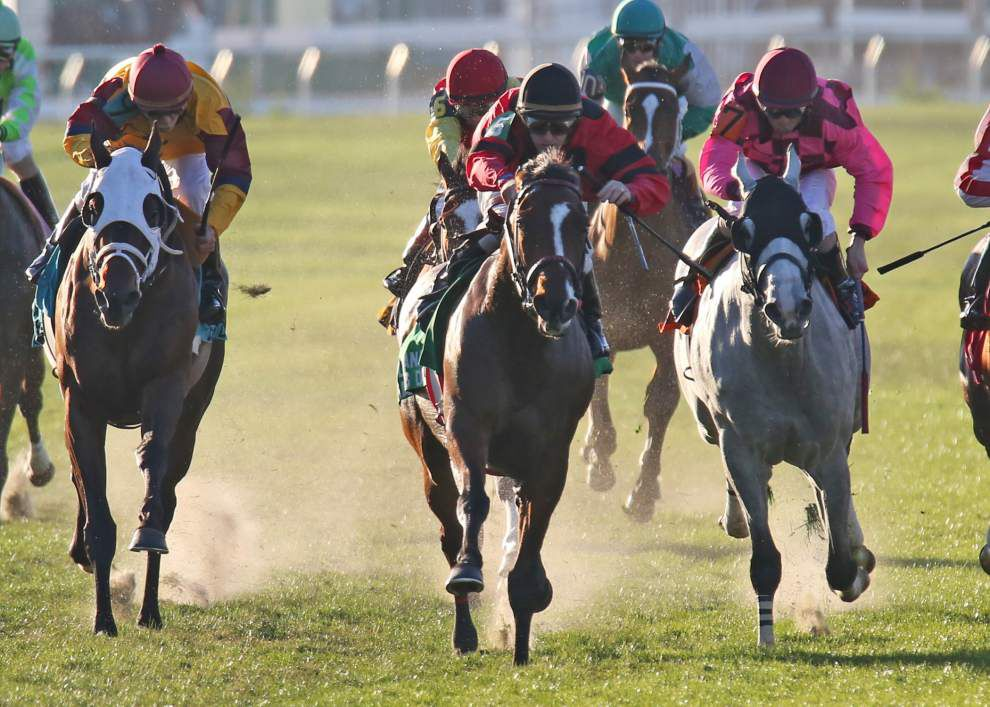 Fair Grounds: Chok's Choices for Sunday, Dec. 14 _lowres