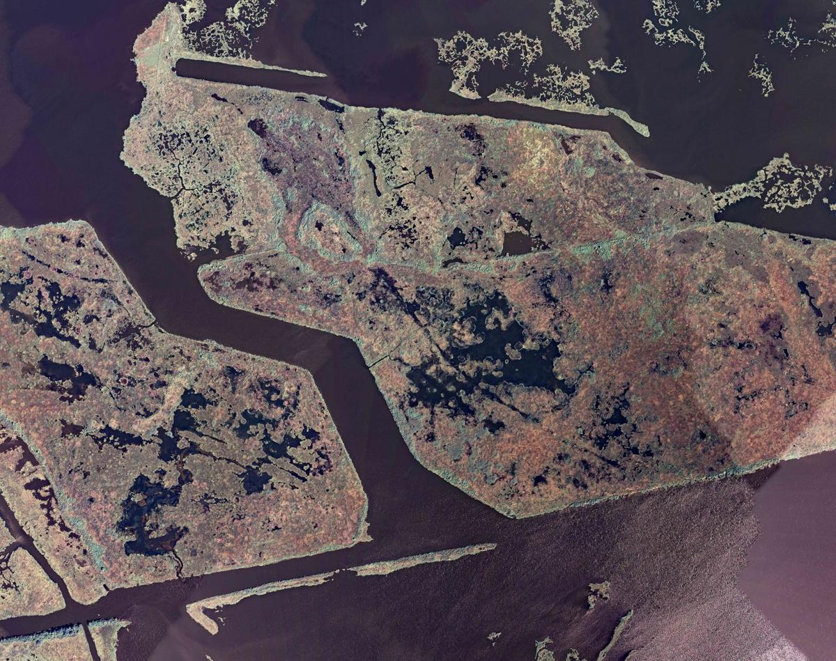 State rebuilt 5.1 square miles of coast with $500M in fines since BP Deepwater Horizon
