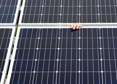 Aca Solarpark11 022418 Copy