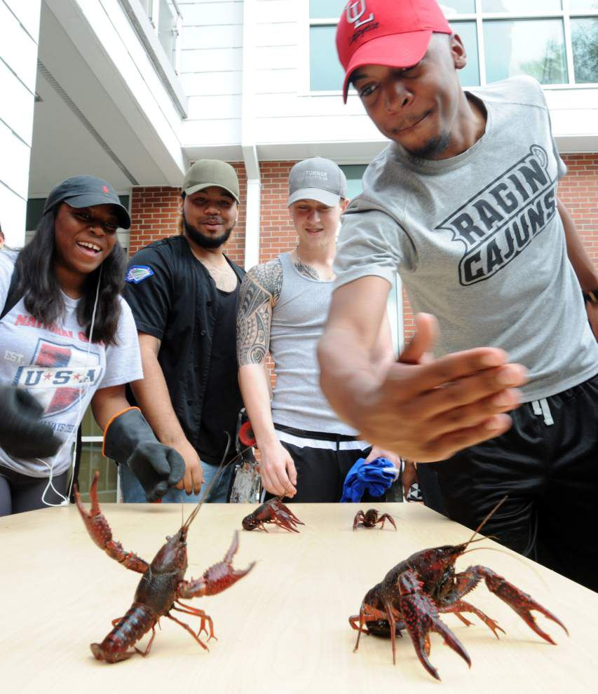 For UL-Lafayette's 'Lagniappe Week,' take 10,000 pounds of crawfish, toss in a pepper-eating contest and enjoy _lowres (copy)