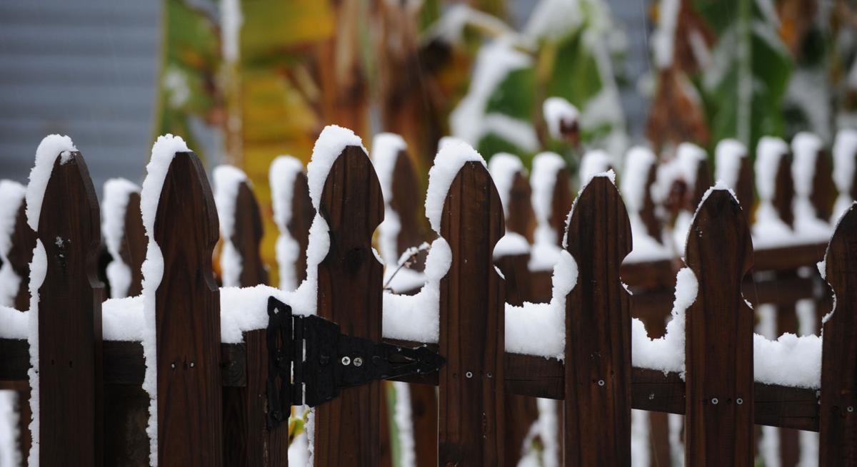 fea snow ms 18.jpg