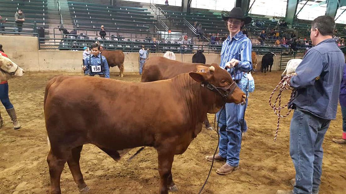Caiden McDowell 4H livestock action.jpg