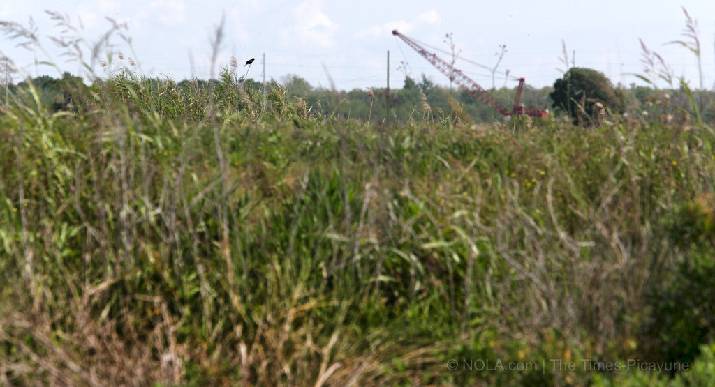 Punch a hole in the Mississippi River levee? The pros and cons