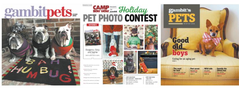 2018 holiday pet photo contest header