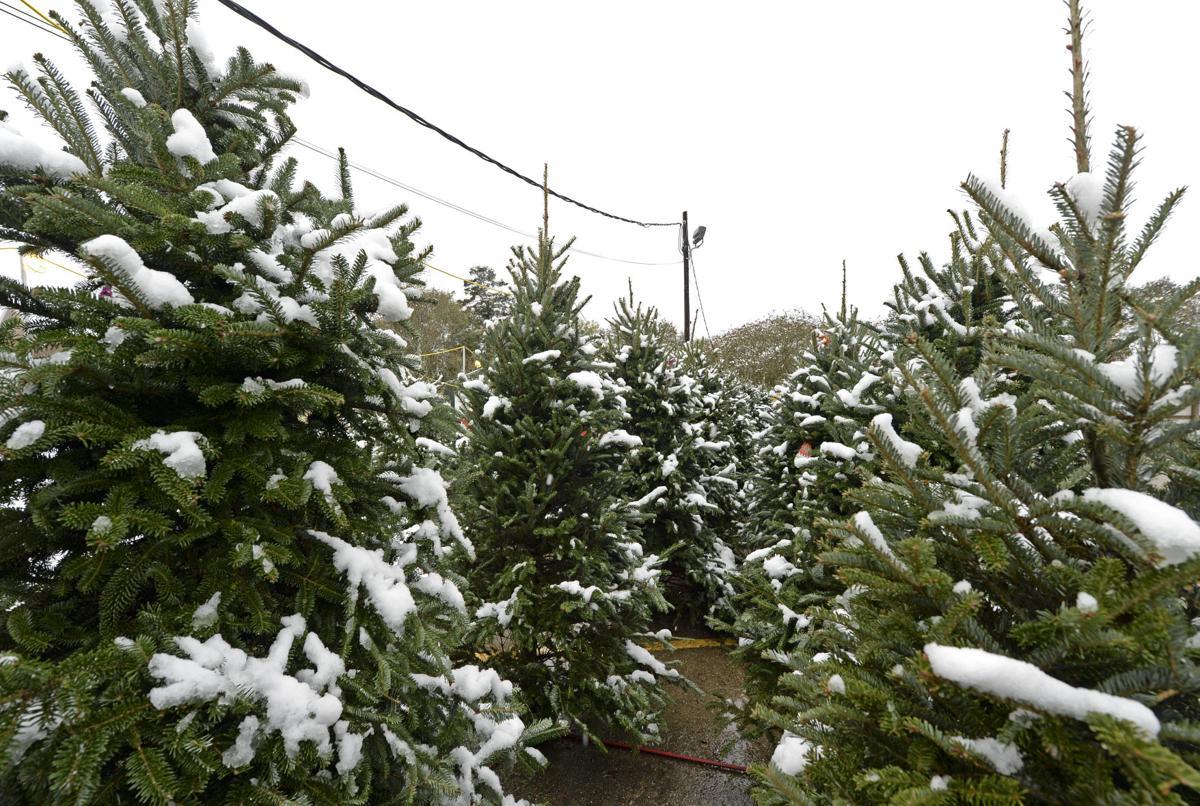 BR.snow.120917 HS 199A.JPG