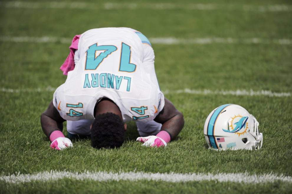 Former LSU player Jarvis Landry is named AFC Special Teams Player of the Month for October _lowres