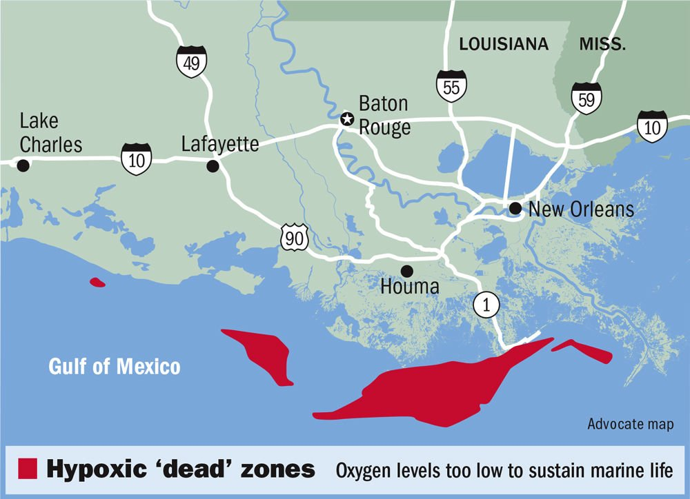 Gulf of Mexico 2018 'dead zone' smaller than expected, but still as Zone Map Gulf Of Mexico on zone map washington, zone map pacific, zone 9 map, zone map arkansas, ecosystems with map of mexico, zone map usa, zone map new england, zone map florida, zone map canada, zone map north america, zone map wyoming,