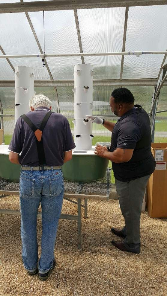 Southern Ag Center researchers look to vertical farms to end food desert _lowres