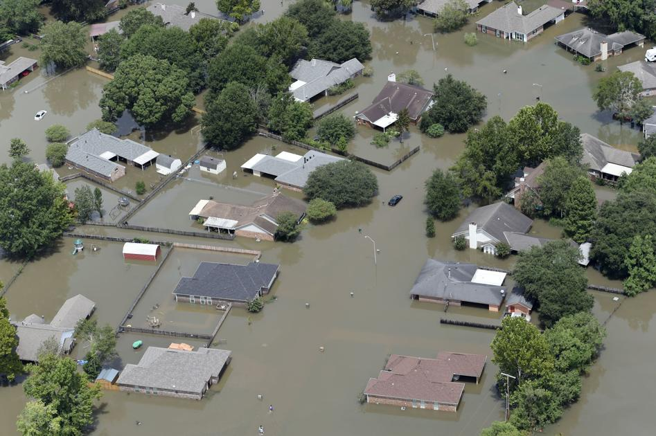 New Orleans Food Insurance Ae