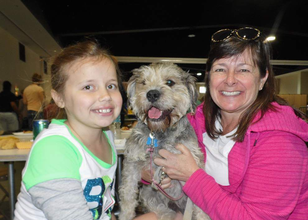 Mandeville's Woofstock is all about the pets _lowres