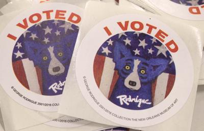 BR.voting.110916  TS  239.jpg