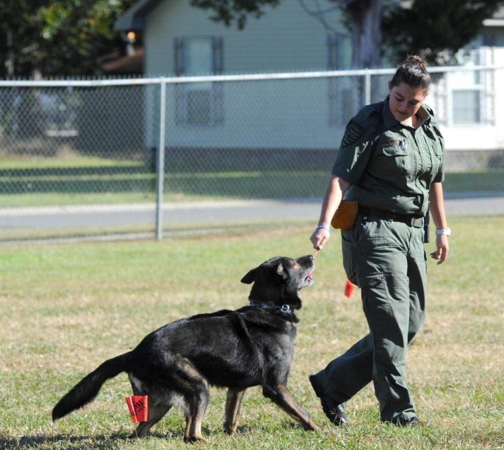 EBR Sheriff's K9 teams earn top honors _lowres