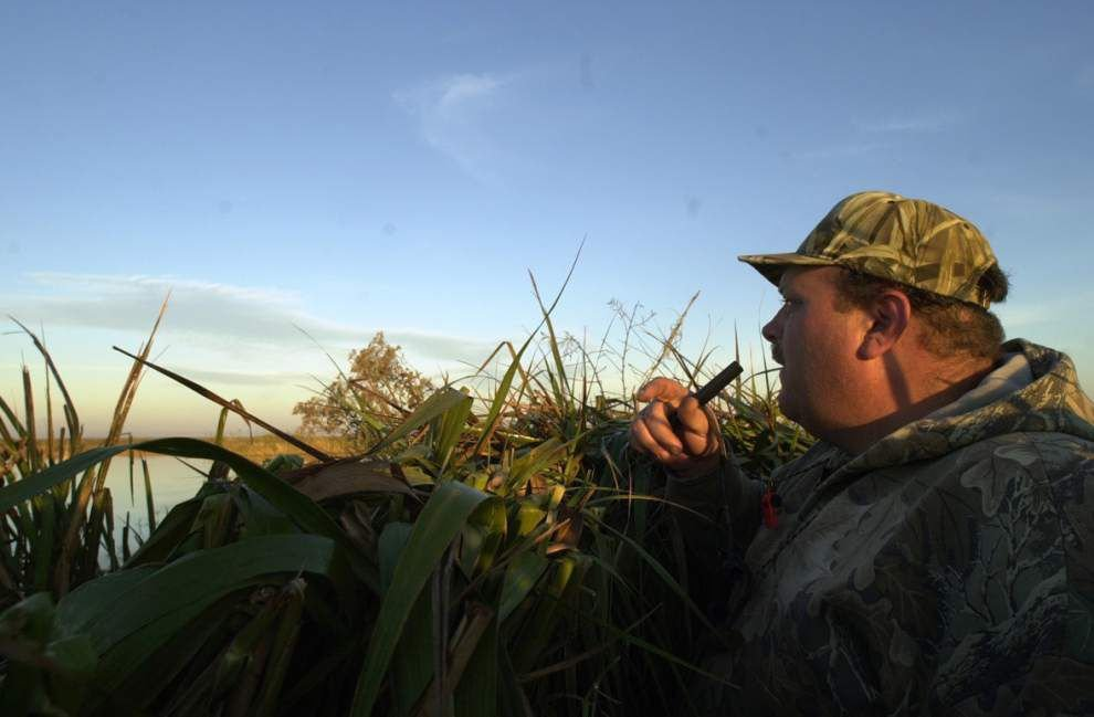 Annual waterfowl survey numbers strong _lowres